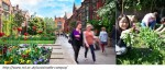 Imagen destacada - Universidades sostenibles