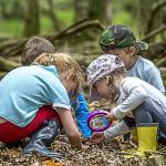 Niños en la naturaleza2